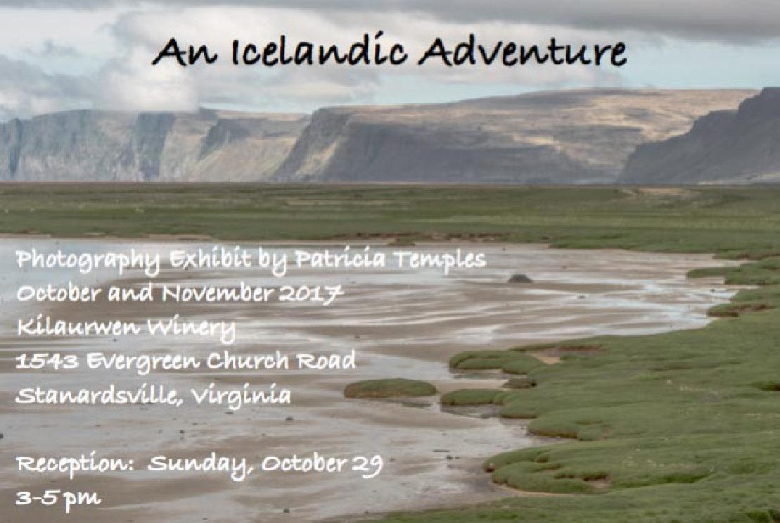 An Icelandic Adventure: Photos by Patricia Temples